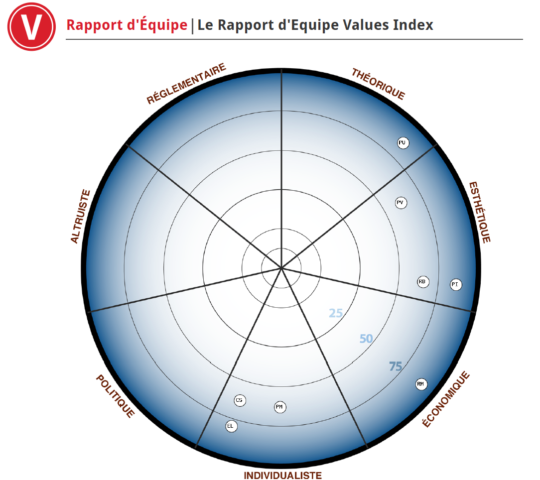 RAPPORT EQUIPE VALUES INDEX